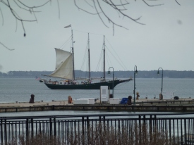 One of the touring schooners hoisting its sails.
