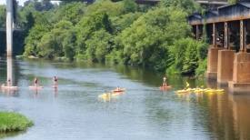 Plenty of activity in the river on a warm summer day
